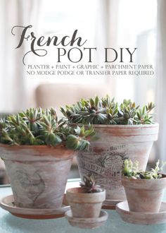 DIY Printed Graphics on Whitewashed Terracotta Pots