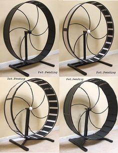 Cat wheel! Who will help me build it? (Needs a screen so blind kitty doesn't get hurt!)
