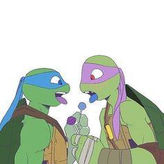 Black And Blue - maratona - Wattpad Tmnt Turtles, Teenage Mutant Ninja Turtles, Tmnt Leo, Tmnt Girls, Tmnt Comics, Tmnt 2012, Fan Art, Anime Love, Childhood Memories