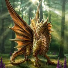 Dragon  Artist Anne Stokes.*