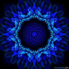 Mandala Art by Marcelo Dalla Azul Indigo, Bleu Indigo, Le Grand Bleu, Illustration Blume, 5d Diamond Painting, Blue Aesthetic, Aquarius Aesthetic, Something Blue, Mandala Art