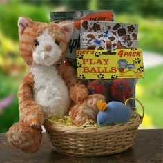 Cat In Around Pet Gift Basket Diygb