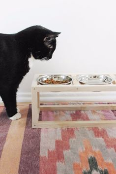 DIY Cat Hacks - DIY Modern Pet Bowl Stand - Tips and Tricks Ideas for Cat Beds and Toys, Homemade Remedies for Fleas and Scratching - Do It Yourself Cat Treat Recips, Food and Gear for Your Pet - Cool Gifts for Cats http://diyjoy.com/diy-cat-hacks