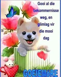 Afrikaanse Quotes, Goeie Nag, Goeie More, Good Morning Wishes, Travel Quotes, Teddy Bear, Toys, Animals, English Grammar