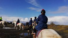 Lakeview Ride with Charlie Riding Holiday, Connemara, Horses For Sale, Lake View, Cob, Horse Riding, Jazz, Irish, October