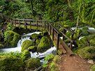 Bridge at Cataract Falls, Mt. Tamalpais, Fairfax, CA;  photo by Hark Lee Photography