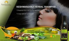 Divya Jyoti Foundation manufactures sanjeevika personal care and health care products to keep your body healthy our sanjeevika keshw. Herbal Store, Healthy Groceries, Dandruff, Natural Products, Hair Loss, Herbalism, Acting, Hair Care, Shampoo