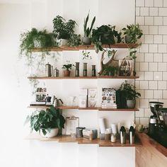 House plants, cozy home, kitchen decor, kitchen plants Kitchen Plants, Kitchen Decor, Kitchen Shelves, Kitchen Storage, Sweet Home, Deco Nature, Decoration Plante, Interior Decorating, Interior Design