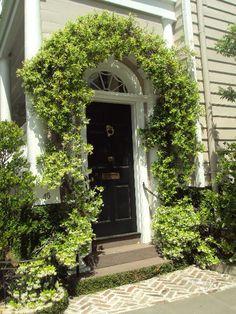 vines door - Google Search