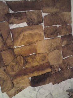 Amadou Products: About Amadou - Fomes Fomentarius
