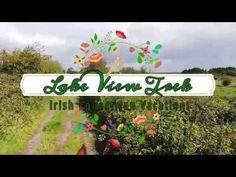 Lake Views: Lough Corrib Riding Holiday, Horse Ears, Horses For Sale, Lake View, Cob, Jazz, Irish, September, Holidays