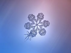 alexey-sublime-les-details-des-flocons-de-neige-a-travers-de-magnifiques-photographie-macro32