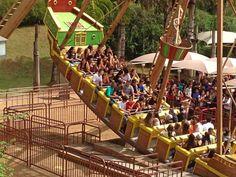 amusement parks essay