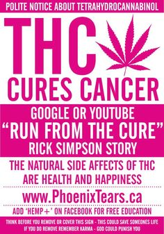 .THC  >> This Heals Cancer