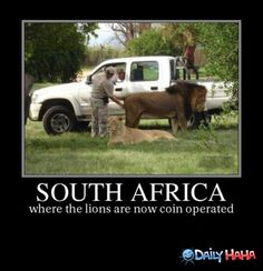 328 Best Only In South Africa Images News South Africa Afrikaans