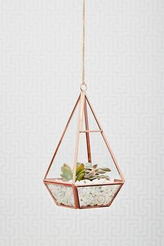 This rose gold terrarium is stunning. A wonderful geometric shape and a great way to not only bring plants into your home, but be bang on trend with this geometric shape and rose gold colour.