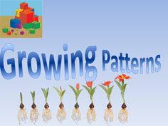 Growing Patterns by Traci Garcia via slideshare Teaching Patterns, Math Patterns, 2nd Grade Classroom, Math Classroom, Classroom Ideas, Sorting Games, Math Games, Second Grade Math, Grade 2
