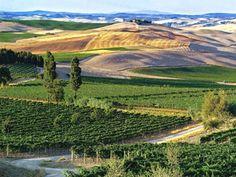 Montalcino - Tuscany -Italy - take me back!!!