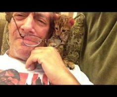 Kitten Needs My Glasses ( Video )