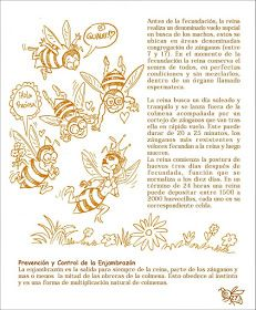 La Familia de la Apicultura - The Beekeeping of Family: Manual Apícola Ilustrado - Beekeeping Illustrated Manual. Drone Bee, Beekeeping For Beginners, Backyard Beekeeping, Family Traditions, Queen Bees, Bee Keeping, Making Out, Harvest, Old Things