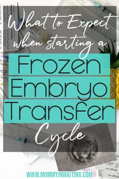 How long does a frozen embryo transfer cycle take? All-in-all, a frozen embryo transfer cycle is a lot shorter and not as intense as an IVF cycle. When To Get Pregnant, Pcos And Getting Pregnant, Infertility Blog, Infertility Treatment, Frozen Embryo Transfer Timeline, Ivf Timeline, Fertility Smoothie, Fertility Diet, Pregnancy After Tubal Ligation
