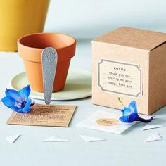Personalised Thank You For Helping Me Grow' Plant Set -Find the perfect present for your little nipper's school teacher. From beautifully personalised gifts to classroom essentials, you'll be sure to find something that will send your child to the top of the class.