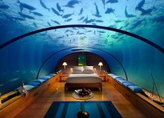 Bedroom surrounded by an aquarium. Can you imagine falling asleep?