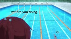 free iwatobi swim club haru swimming - Google Search