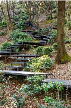 Outdoor steps could be made with old or discarded wood.