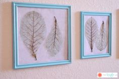 color tinted skeleton leaves for wall decor: http://www.thekreativelife.com/diy-color-tinted-skeleton-leaves/