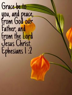Ephesians and peace. Prayer Verses, Scripture Quotes, Jesus Quotes, Bible Verses, The Cost Of Discipleship, My Jesus, Jesus Christ, Book Of Ephesians, Be Of Good Courage