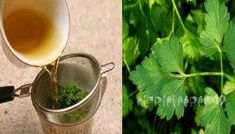 Secret Parsley Tea to Burn Fat in a Week without harming your health. In addition, Salsa Tea to Burn Fat in a Week Lose 7 kg without Exercise in healthy way . Parsley Tea, Appetisers, Moscow Mule Mugs, Superfoods, Fat Burning, Health Tips, Herbalism, Remedies, Food And Drink