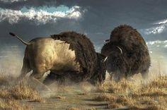 Arte Digital - bisonte lucha por Daniel Eskridge