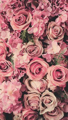Imagem de rose, flowers, and pink iPhone wallpaper Wallpaper Iphone5, Floral Wallpaper Iphone, Cool Wallpaper, Wallpaper Ideas, Flower Wallpapers For Iphone, Nature Wallpaper, Pink Flower Wallpaper, Phone Wallpapers, Flower Lockscreen