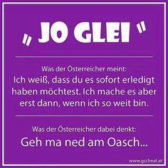 Funny Memes, Hilarious, Jokes, Pure Fun, Lost & Found, True Stories, Austria, Fails, Haha