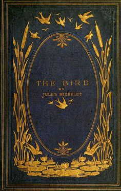 The Bird by Jules Michelet, 1869 ~ Use for frame