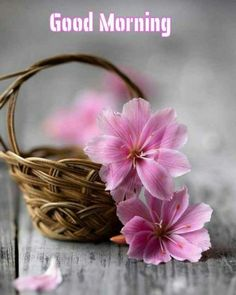 Good Morning God Quotes, Good Morning Cards, Morning Love, Good Morning World, Good Morning Picture, Good Night Image, Good Morning Messages, Good Morning Good Night, Morning Gif