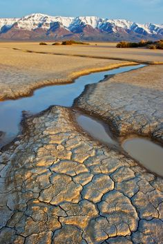 Alvord Desert and the Steens