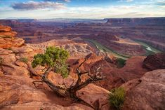 Dead Horse Point State Park, Utah, USA. From Thelma & Louise (Ridley Scott, 1991) and Mission: Impossible 2 (John Woo, 2000)