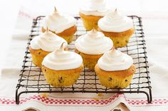 Passionfruit meringue cupcakes.  Whip up these melt-in-the-mouth meringue cupcakes for a sweet morning tea treat.
