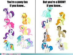 Right- Lyra Heartstrings, Bon Bon, Carrot top, Octavia Melody, Doctor Whooves, DJ Pon3 (Vinyl Scratch) and Derpy Hooves