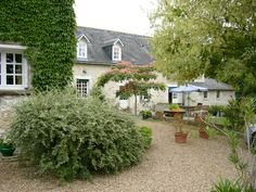 VineYard_LoireFrance for Sale, contact us for personal informations #luxury-life-style