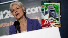 #When Two Memes Collide: Dr. Jill Stein Speaks Out About Harambe - Gizmodo: Gizmodo When Two Memes Collide: Dr. Jill Stein Speaks Out About…