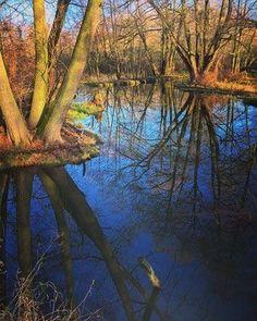 winter fotografie wendland, spreewald