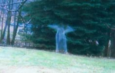 This image was captured by a hunter's motion sensor and so far has remained unexplained. Could it be a ghost or a Real Angel? pinterest.com/superneppis/ufo/