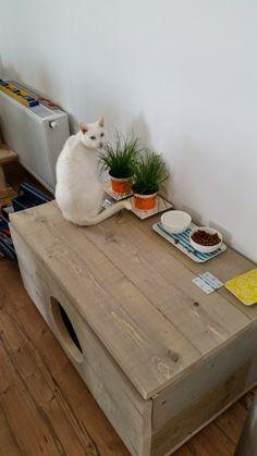 De kattenbak, niet het meest mooie object in het huis. Sinds de verhuizing hebben we deze in de woonkamer staan, in de gang is helaas geen optie. Omdat Diablo er altijd een groot feest van maakt en de korrels tot bij het zitgedeelte meegenomen worden hebben wij iets anders bedacht. Een heus schijtpaleis waar de kattenbak instaat maar waar ook het voer en het kattengrind in bewaard kan worden. Een mooie en makkelijke oplossing!