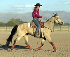 Long trotting encourages a horse to stretch his muscles, tendons and ligaments.