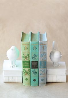 Organize your bookshelf with these adorable bookends featuring a cute bird  and book design These Fun bike Love the minty green color New Home Gifts