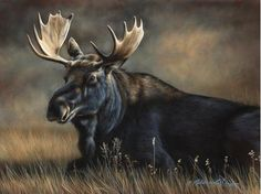 Paintings by international wildlife artist Rebecca Latham. Featuring North American animals, birds, & nature in watercolor painted in miniature. Small Paintings, Animal Paintings, Animal Drawings, Acrylic Paintings, Watercolor Painting, Watercolors, Wildlife Paintings, Nature Paintings, North American Animals