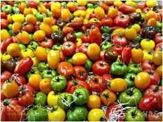 Tomates anciennes ! (Jean François  Di Fiore) #F3211 #food #photo #delicious